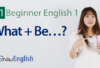 What + Be Verb Questions