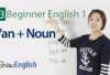 a / an + Noun