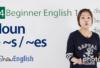 Singular / Plural Nouns