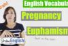 Pregnancy Euphemisms Explained in English